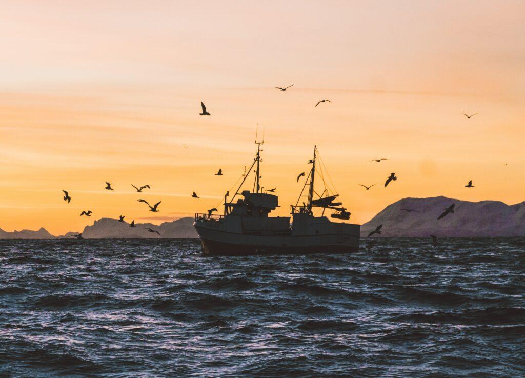 Reiðarslag í fiskveiðistjórnun